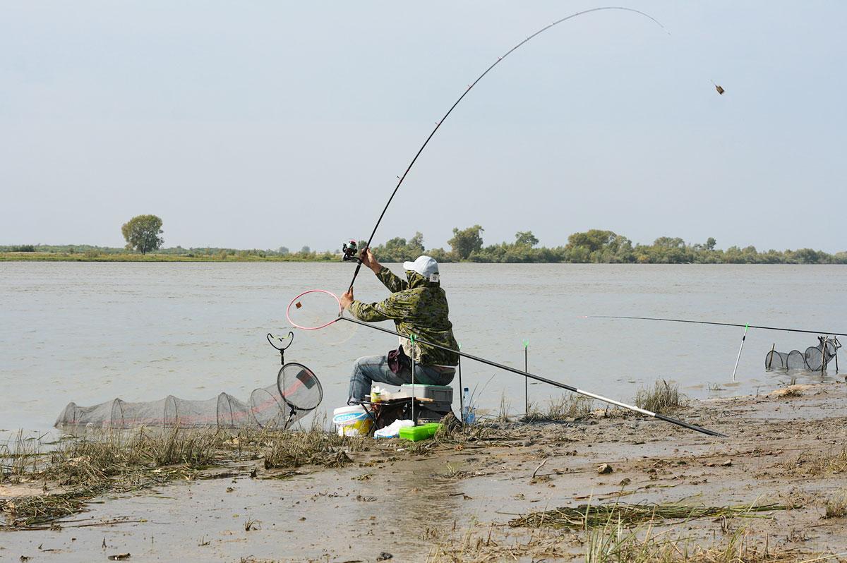 рыбалка тешеничи брянской области