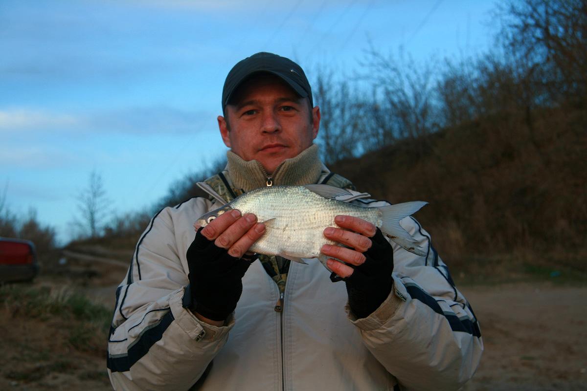 Какая рыба ловится на Иртыше?